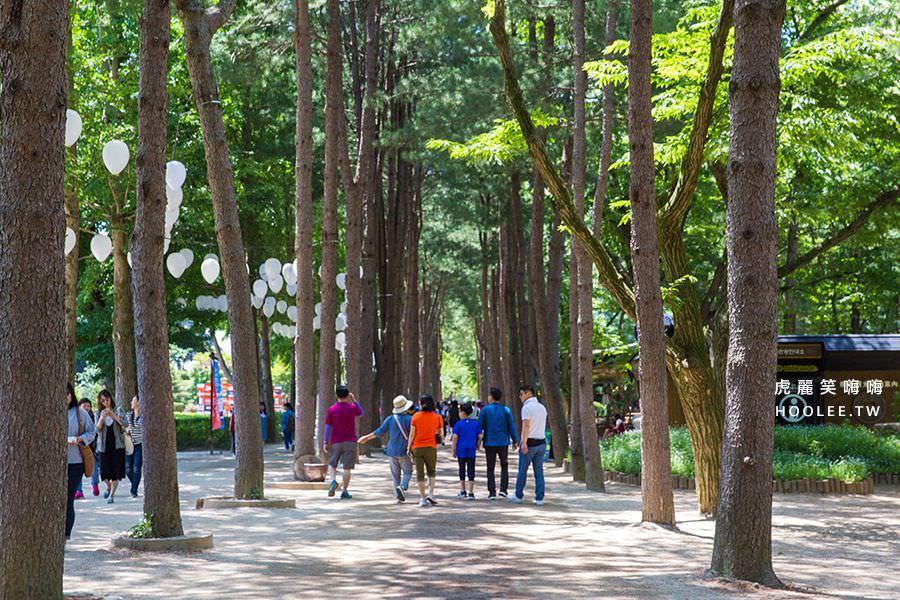 韓國景點 南怡島